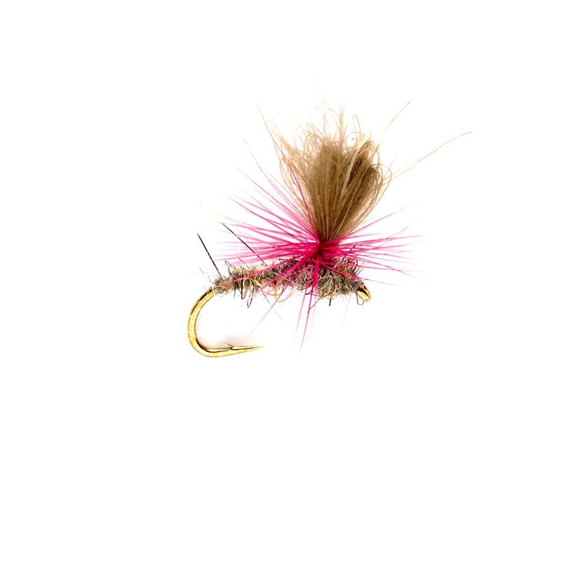 Muller, pink