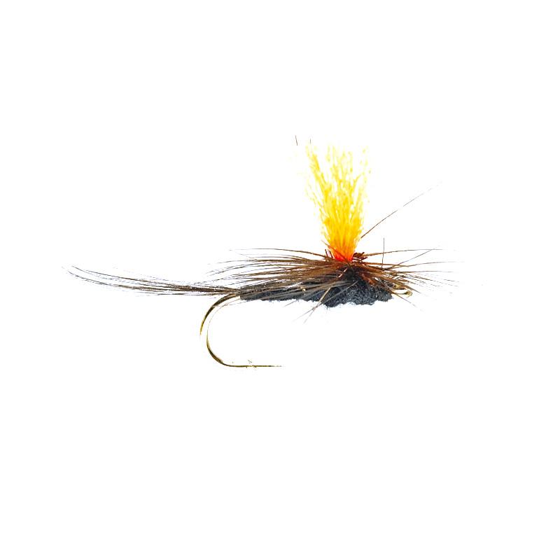 Parachute Spot-On, schwarz