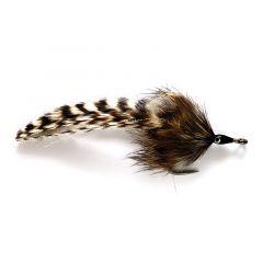 Tarpon Rabbit Roach