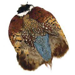 Ringneck Pheasant Whole Skins