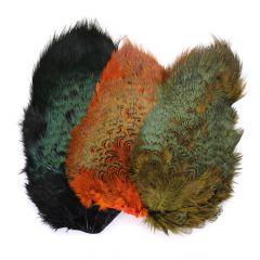 Cock Pheasant Rump Patch