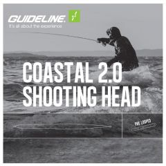Guideline Coastal 2.0 Shooting Head, Slow Intermediate