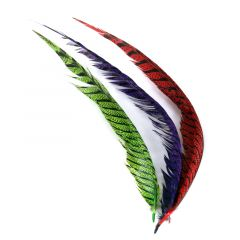 Lady Amherst Center Tail Feather