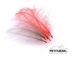 CDC Marc Petitjean Cul-De-Canard Feathers