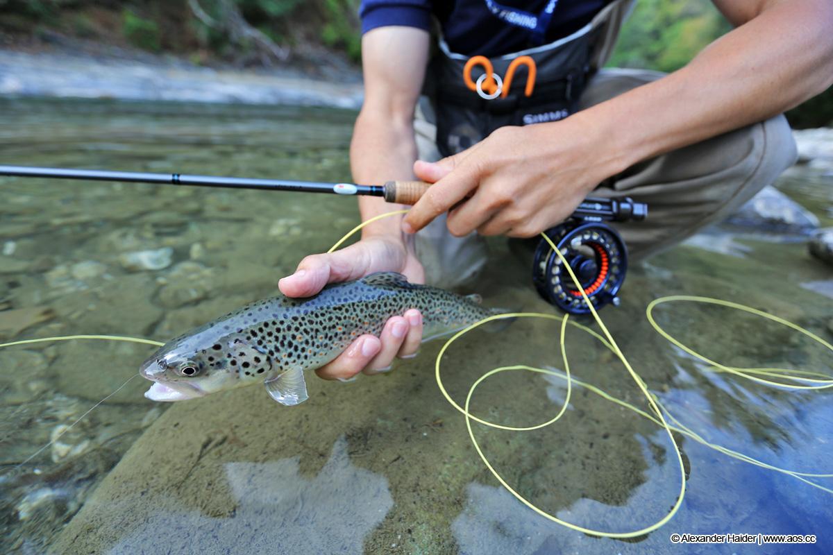 Fliegenfischen lernen | Kurse