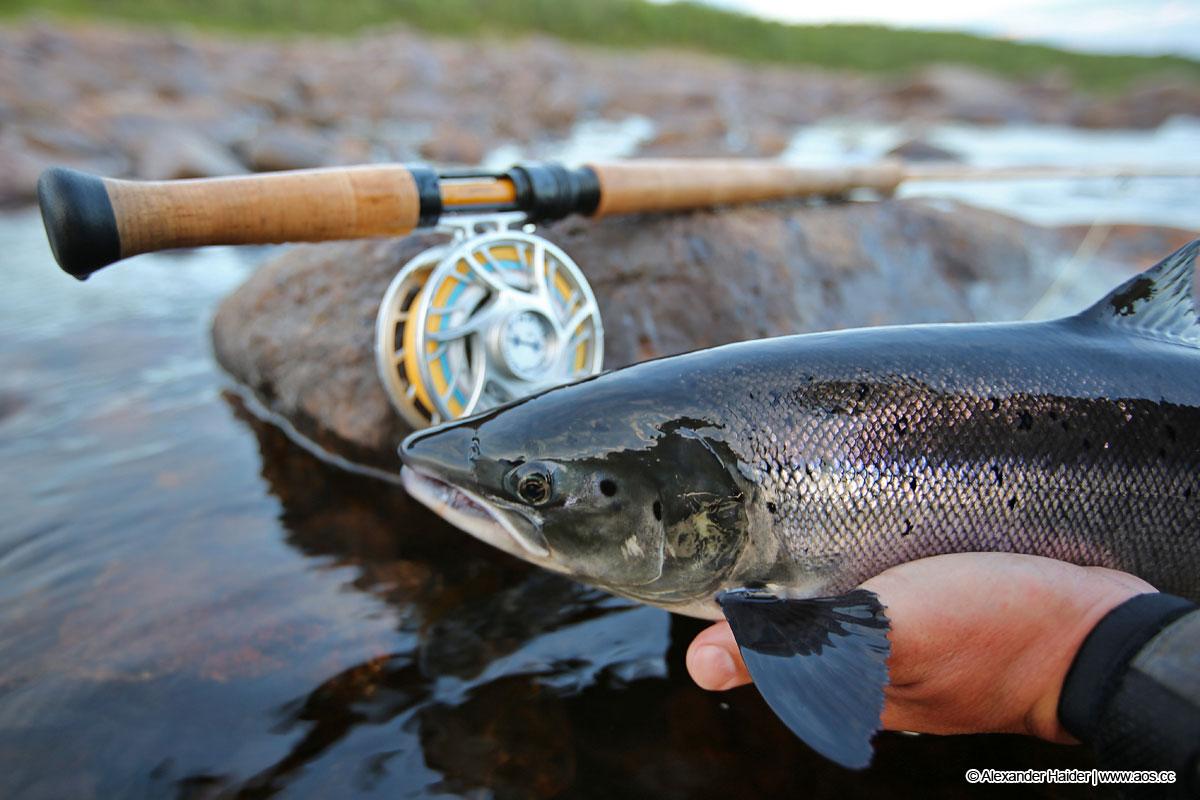 Fachbegriffe im Fliegenfischen