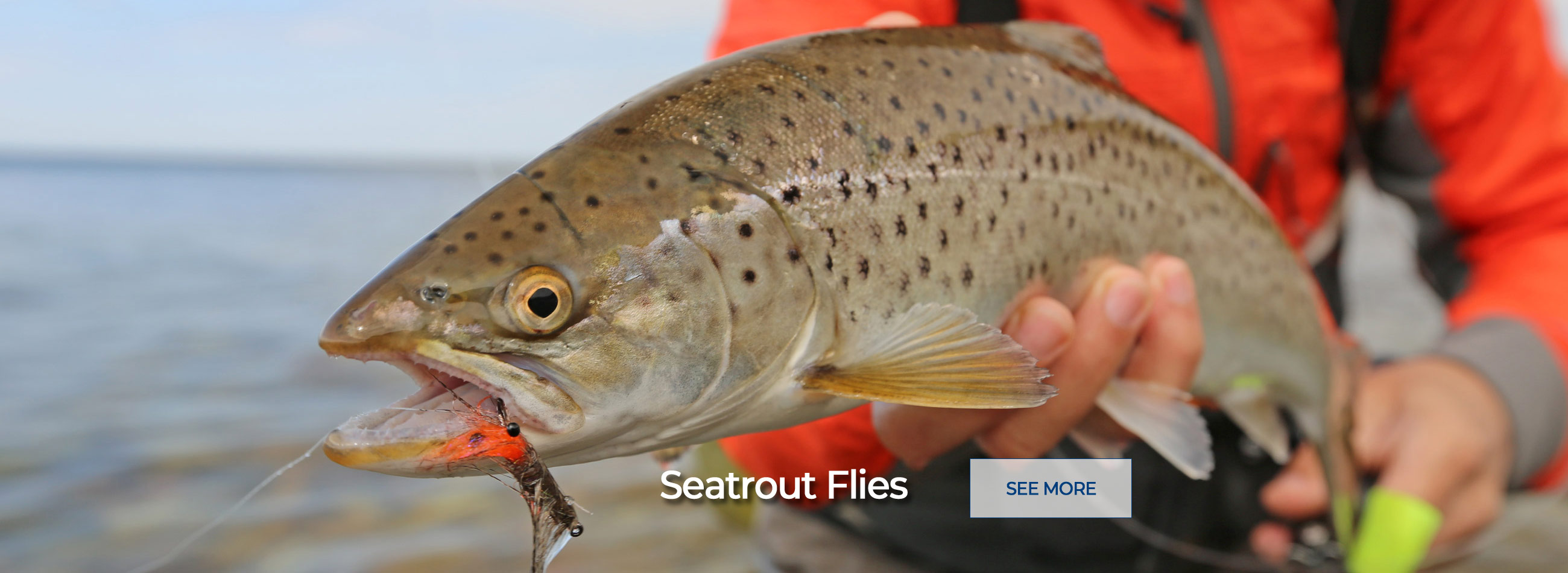 Fishing for Seatrout - buy online! The best Flies for Seatrout!