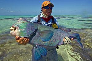 Farquhar Atoll Seychellen, Fliegenfischen auf GT, Milkfish, Trigger & Bonefish an Board der Mayas Dugong