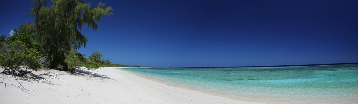 Fliegenfischen Cosmoledo Seychellen